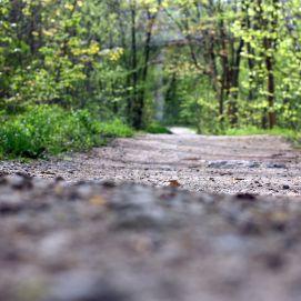 Qu'est-ce qu'un trail ?