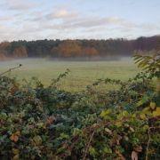 Le système de Trail Natuurloop : testé et approuvé dans la forêt de Meerdaal !-article-trail-belgique