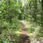 Qui va gagner l'OHM Trail?-article-trail-belgique